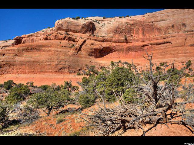 33 W Austin Ct, Moab, UT 84532 (#1655175) :: RE/MAX Equity