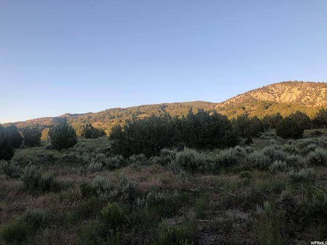 Address Not Published, Levan, UT 84639 (#1655709) :: Bustos Real Estate | Keller Williams Utah Realtors