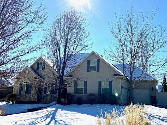 6859 W 10430 N, Highland, UT 84003 (#1656034) :: Action Team Realty