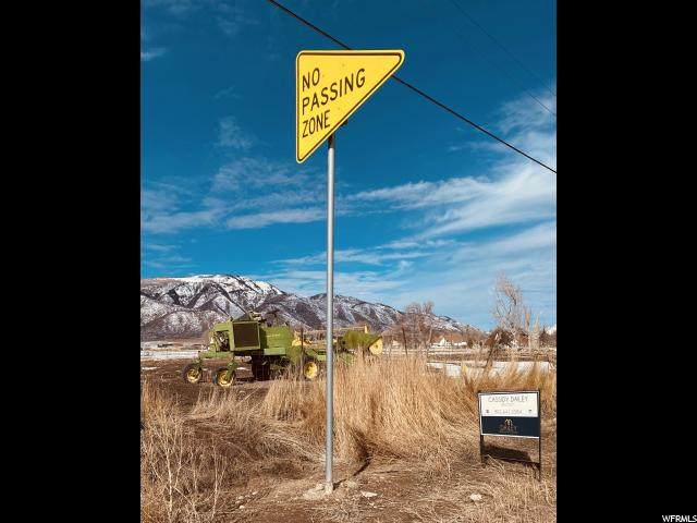Address Not Published, Fountain Green, UT 84632 (#1656746) :: Red Sign Team