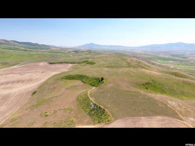 1000 E Arkansas Rd N, Arimo, ID 83214 (#1657088) :: Bustos Real Estate | Keller Williams Utah Realtors