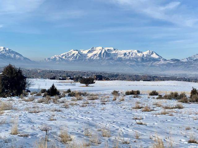 981 N Chimney Rock Rd (Lot 286), Heber City, UT 84032 (#1657308) :: The Canovo Group