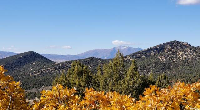 Address Not Published, Indianola, UT 84629 (#1660083) :: Doxey Real Estate Group