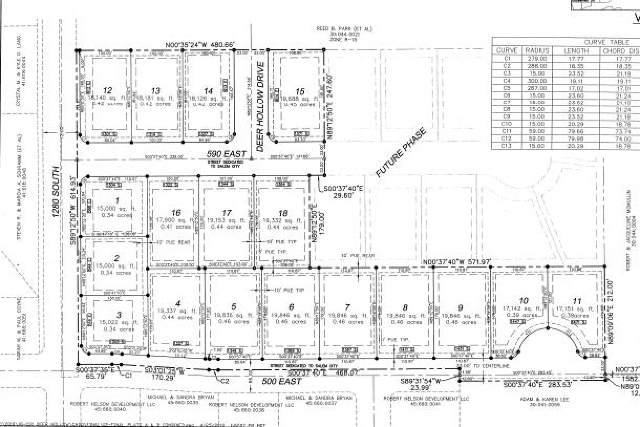 1431 S 500 E, Salem, UT 84653 (MLS #1660263) :: Lawson Real Estate Team - Engel & Völkers