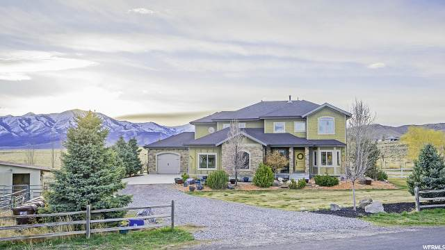9131 N Canyon Wash Dr E, Eagle Mountain, UT 84005 (#1665057) :: RE/MAX Equity