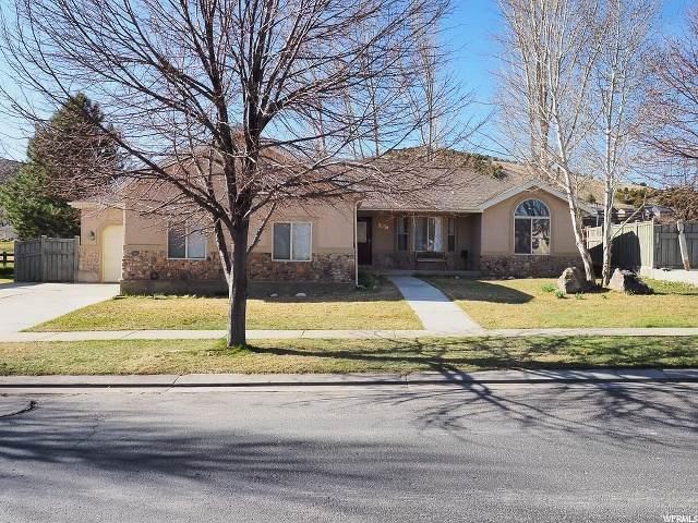 3038 E Tinamous Rd N, Eagle Mountain, UT 84005 (#1665398) :: Big Key Real Estate