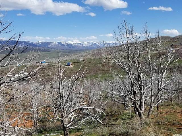 36 W Indian Rdg N, Fairview, UT 84629 (#1665523) :: Utah City Living Real Estate Group