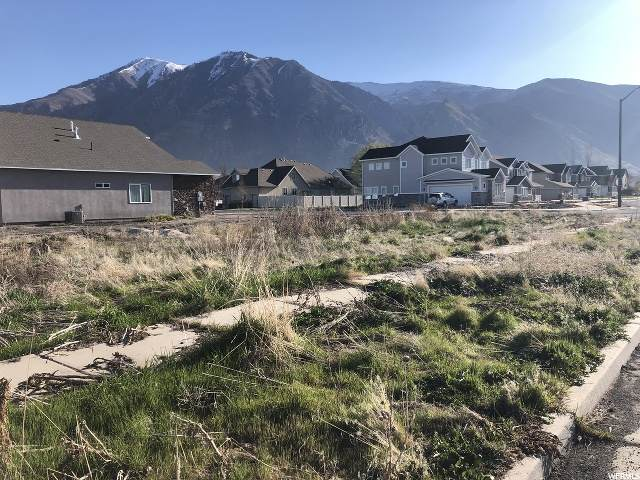 253 N 750 W, Springville, UT 84663 (MLS #1668481) :: Summit Sotheby's International Realty