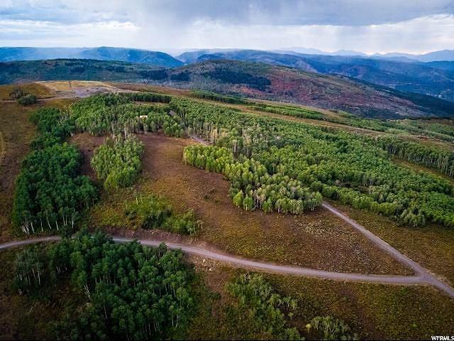 23271 E Elk Meadows Dr., Spanish Fork, UT 84660 (MLS #1670083) :: Lookout Real Estate Group