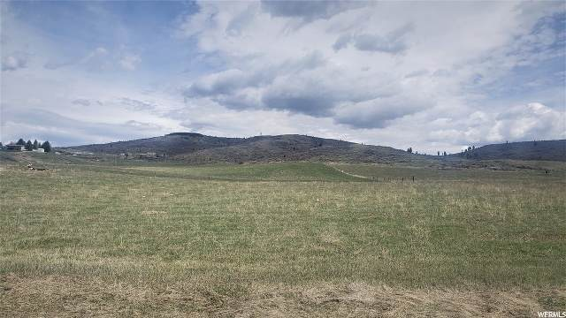 Address Not Published, Soda Springs, ID 83276 (MLS #1670255) :: Lookout Real Estate Group