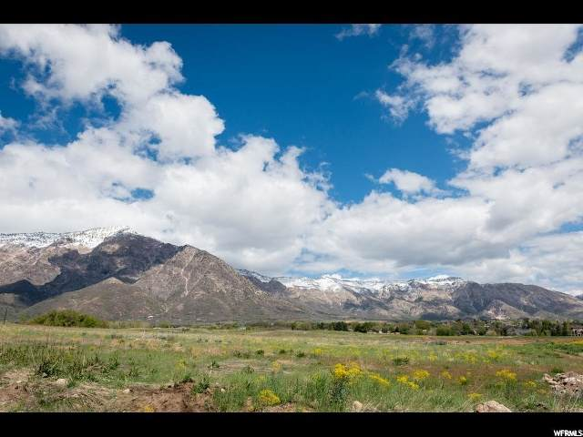 1218 W 4050 N, Pleasant View, UT 84414 (MLS #1670452) :: Lookout Real Estate Group