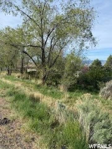 4633 Canyon Rd - Photo 1
