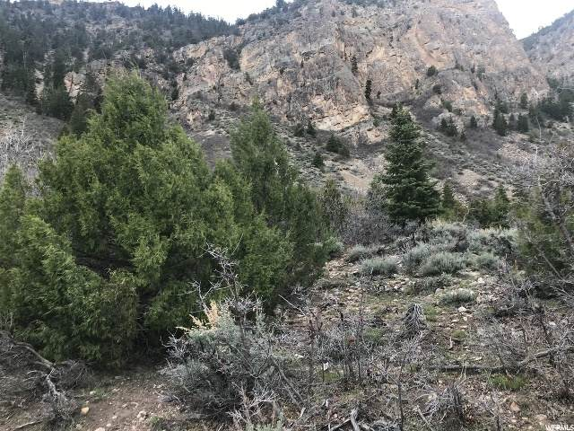 Address Not Published, Hanna, UT 84031 (MLS #1671227) :: Lookout Real Estate Group