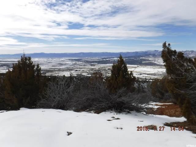 13180 E Juniper Dr, Fairview, UT 84629 (#1671466) :: Utah City Living Real Estate Group