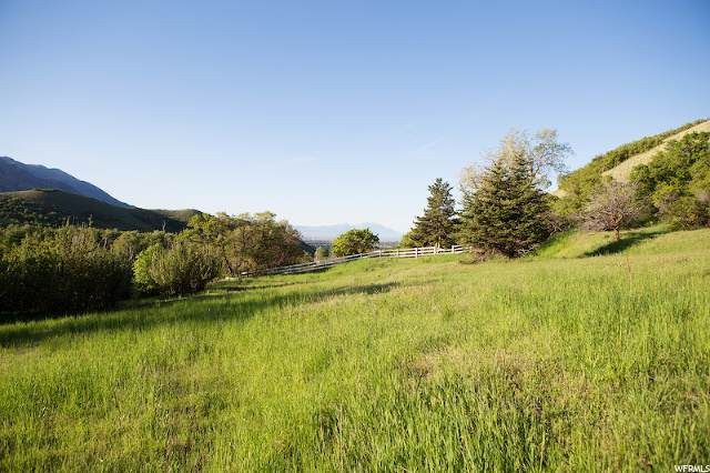 197 W Creekside Ct, Alpine, UT 84004 (#1673363) :: Colemere Realty Associates