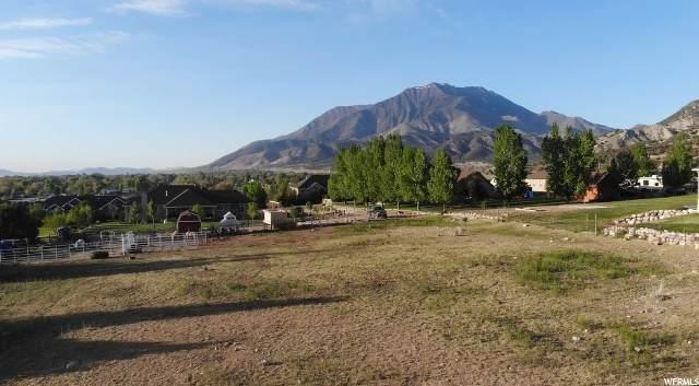 313 E 1200 S, Nephi, UT 84648 (#1673497) :: Big Key Real Estate