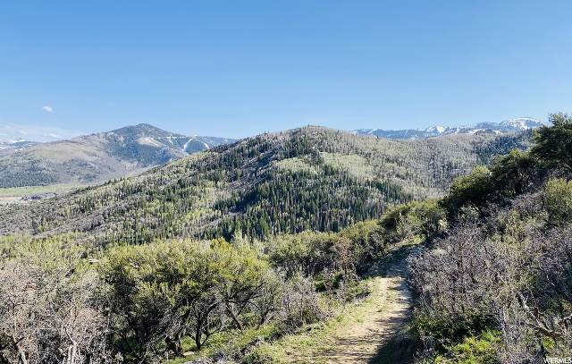 2740 Bear Dr, Park City, UT 84098 (MLS #1673819) :: High Country Properties