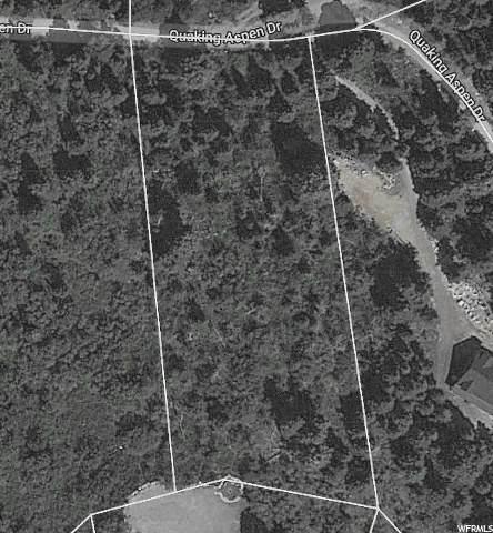 14620 E Quaking Aspen Dr N, Fairview, UT 84629 (#1674012) :: Colemere Realty Associates