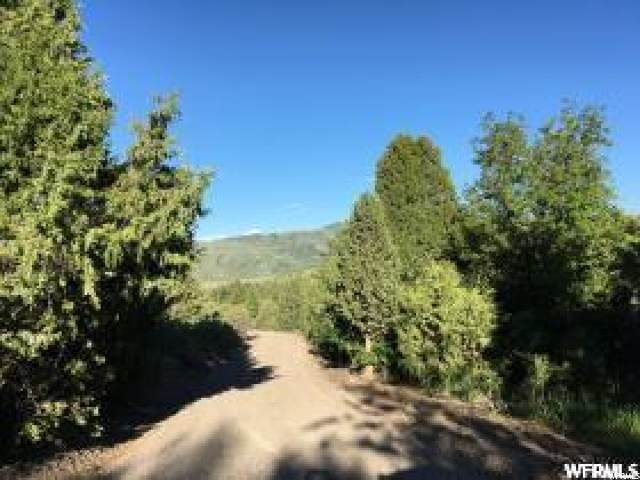 9 Moose Hollow Rd, Lava Hot Springs, ID 83246 (#1674148) :: Colemere Realty Associates