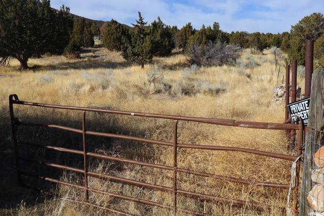 Address Not Published, Cedar Fort, UT 84013 (#1674543) :: The Perry Group