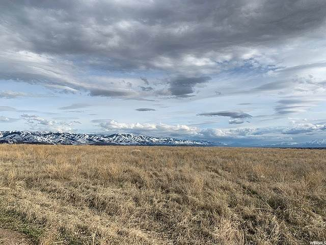 4800 N Skyline, Preston, ID 83263 (#1676248) :: REALTY ONE GROUP ARETE