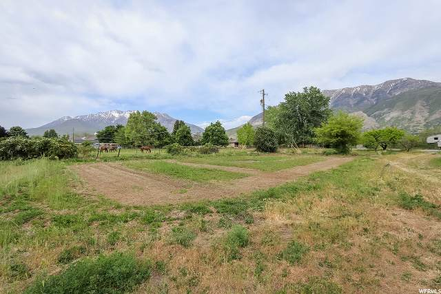 1056 S 1000 E, Orem, UT 84097 (#1676668) :: RE/MAX Equity