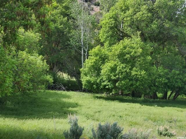 16000 E Stockton Rd S, Swanlake, ID 83281 (#1676834) :: Utah City Living Real Estate Group