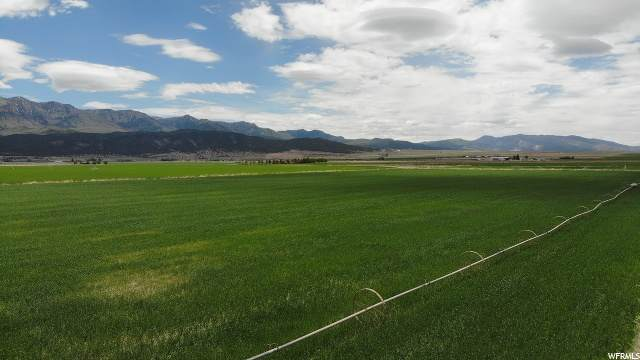 Address Not Published, Nephi, UT 84648 (MLS #1677601) :: Summit Sotheby's International Realty