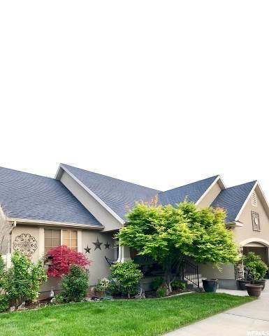 1323 S Avalon Dr, Springville, UT 84663 (#1677834) :: Bustos Real Estate | Keller Williams Utah Realtors