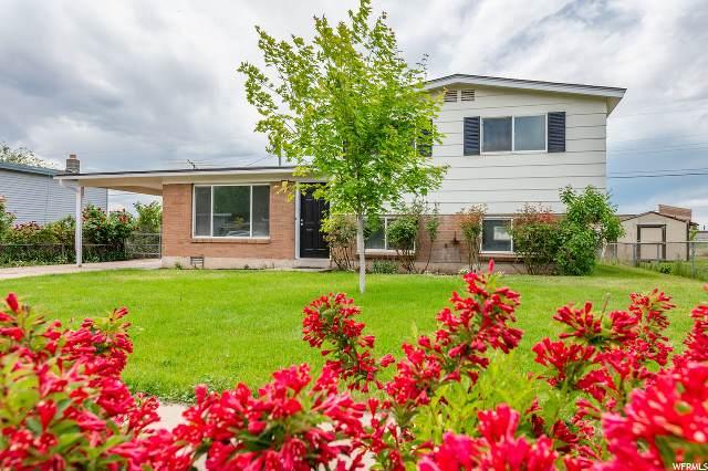 1681 N Celia Way, Layton, UT 84041 (#1677845) :: Bustos Real Estate   Keller Williams Utah Realtors