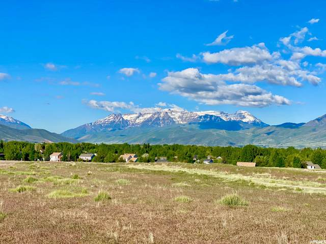 456 N Haystack Mountain Dr, Heber City, UT 84032 (MLS #1678708) :: High Country Properties
