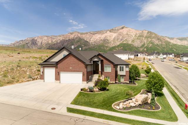 1202 W Fallow Way N, Pleasant View, UT 84414 (#1678730) :: Gurr Real Estate