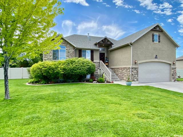 2527 W 2625 N, Farr West, UT 84404 (#1678912) :: Exit Realty Success