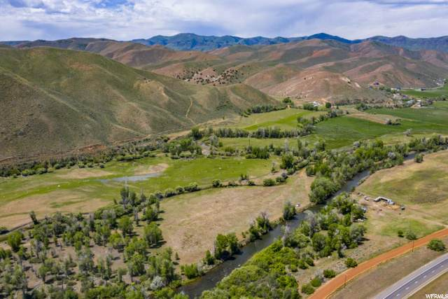 2353 South Henefer Rd, Henefer, UT 84033 (MLS #1678944) :: High Country Properties