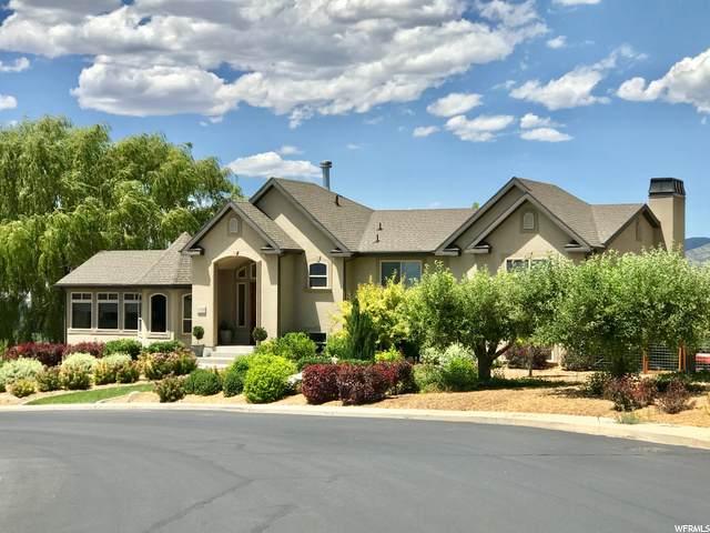 4309 W Oak Rd N, Cedar Hills, UT 84062 (#1679144) :: goBE Realty
