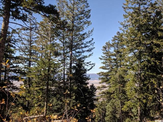 45 Pine Ridge, Mount Pleasant, UT 84647 (#1679908) :: The Perry Group