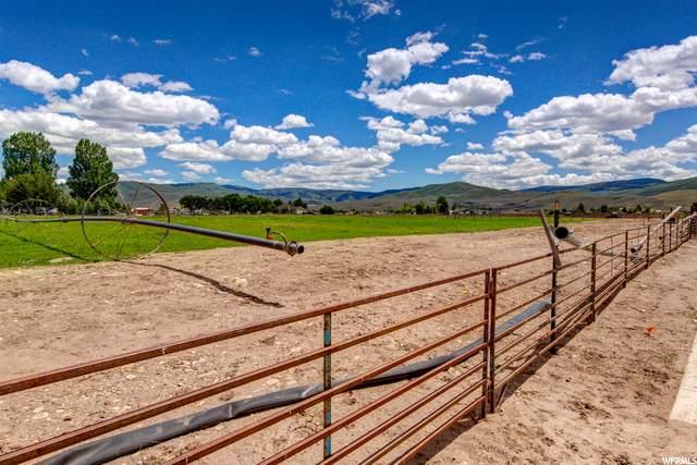 1417 S 2240 E, Heber City, UT 84032 (#1681017) :: The Perry Group