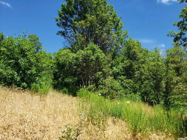 107 N Upper Oakwood Dr E, Springville, UT 84663 (#1681170) :: Exit Realty Success