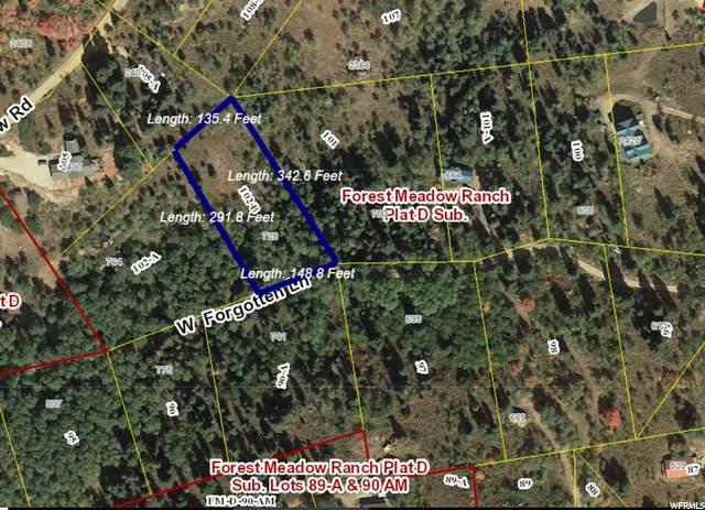728 Forgotten Ln, Wanship, UT 84017 (MLS #1681402) :: High Country Properties
