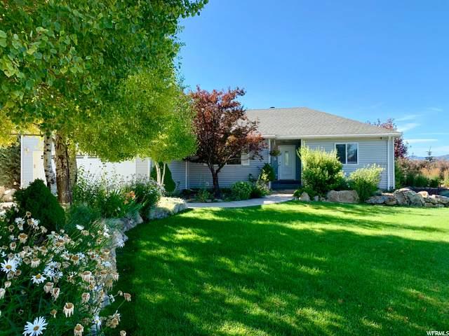 352 Spring Canyon Rd, Coalville, UT 84017 (#1681848) :: Big Key Real Estate