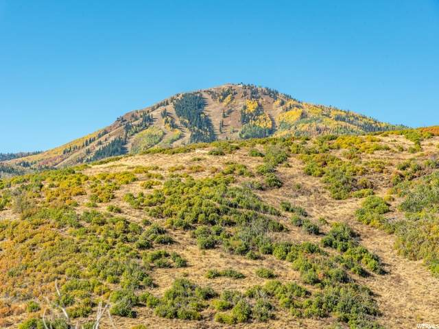 1546 W Orion Way, Heber City, UT 84032 (#1682969) :: Colemere Realty Associates
