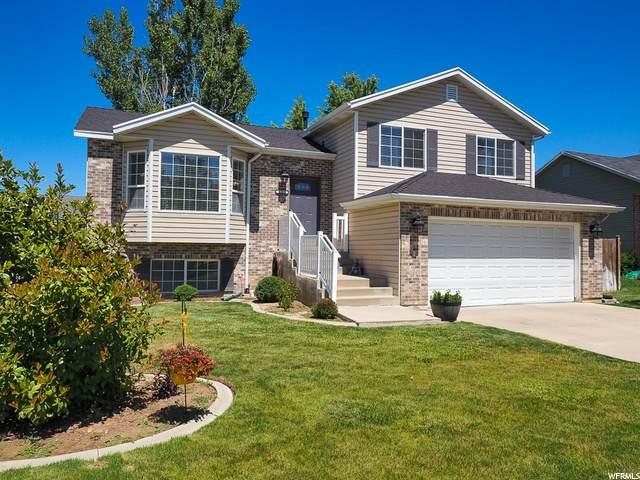 1215 Sandi St, Layton, UT 84041 (#1683181) :: Utah City Living Real Estate Group