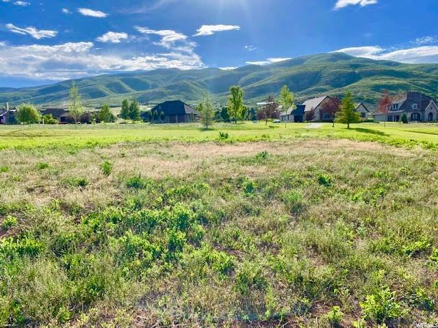 559 W Rheinfalls Cir, Midway, UT 84049 (#1684087) :: The Perry Group