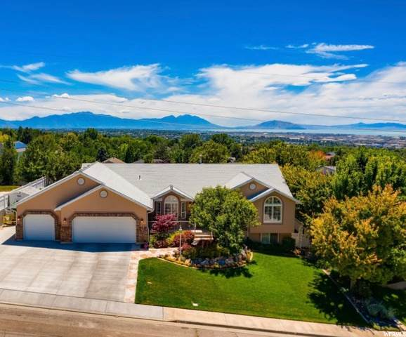 892 E 1150 N, Pleasant Grove, UT 84062 (#1684115) :: Doxey Real Estate Group