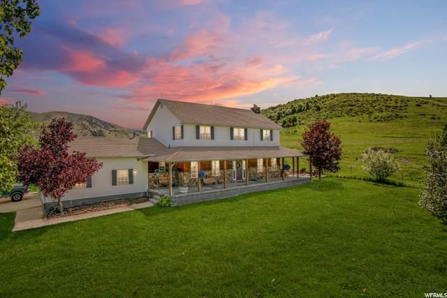 11685 S 800 E, Avon, UT 84328 (#1684355) :: Big Key Real Estate