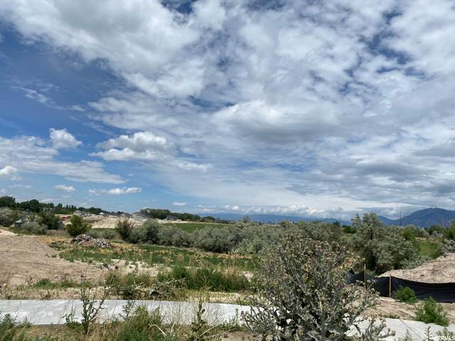 506 W Windmill Gate Cv W, Draper, UT 84020 (#1684448) :: Big Key Real Estate