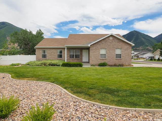 3144 E 1530 S, Spanish Fork, UT 84660 (#1684612) :: Exit Realty Success