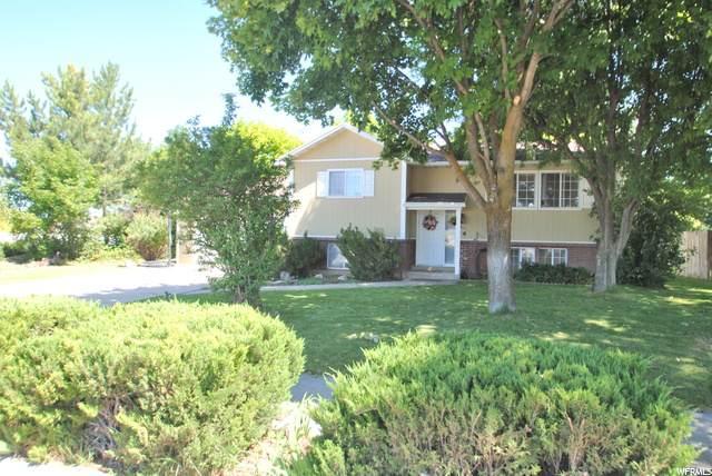 811 E 2900 N, North Logan, UT 84341 (#1684848) :: Big Key Real Estate
