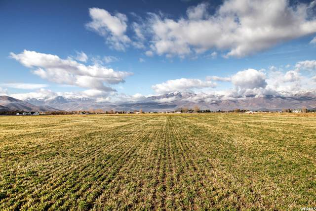 2373 E Wild Mare Way, Heber City, UT 84032 (#1684934) :: The Perry Group