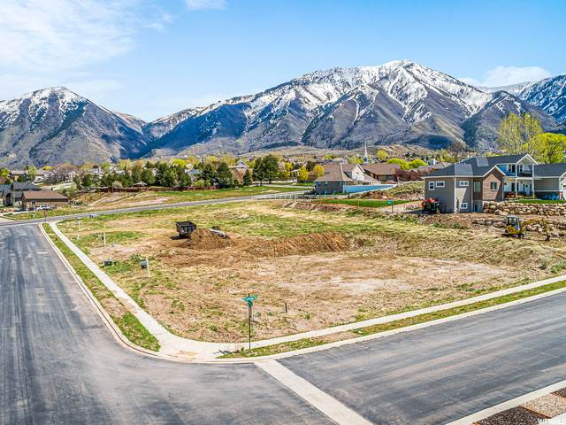 303 W Olympic Ln, Elk Ridge, UT 84651 (MLS #1685111) :: Lookout Real Estate Group